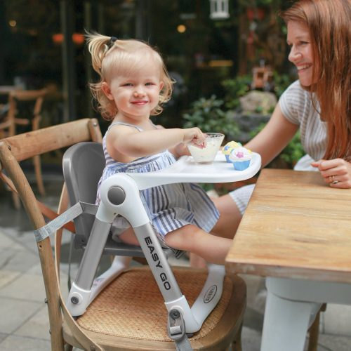 Easy Go Dining Booster Chair